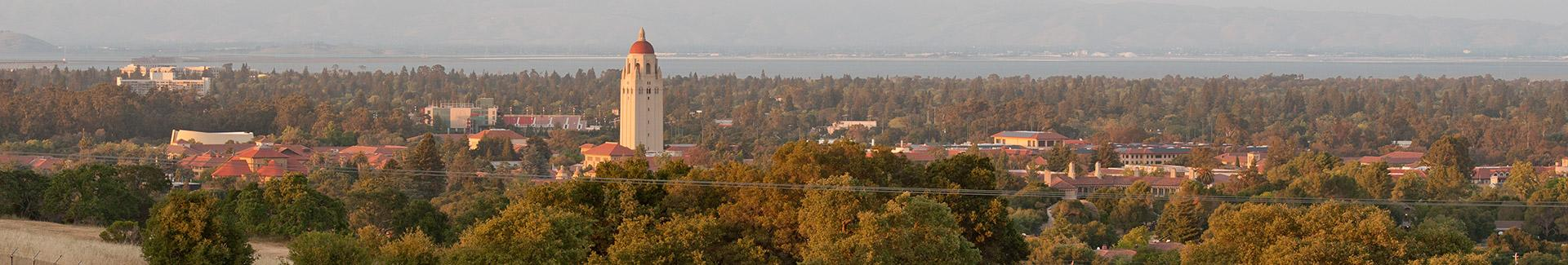 Stanford campus with Hoover tower in the far distance